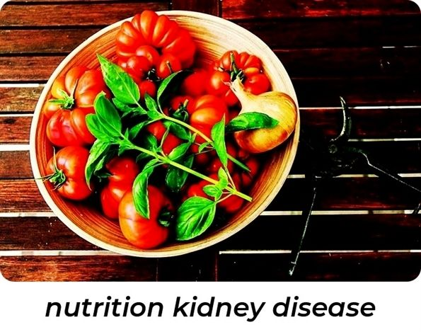nutrition kidney disease_475_20180906093729_54 #nutrition