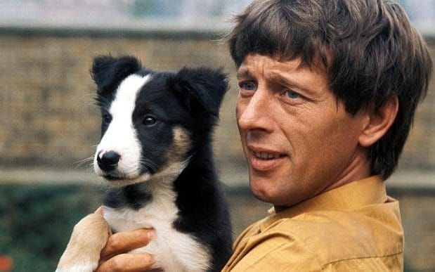 John Noakes, the former Blue Peter presenter, who had been suffering from Alzheimer's disease and went missing from his home in Majorca, was the very essence of a television original.