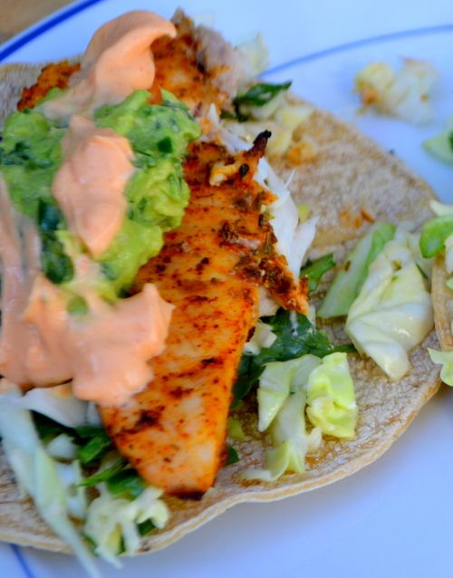 Grilled fish taco with guac spicy mayo and cilantro for Fish taco red cabbage slaw