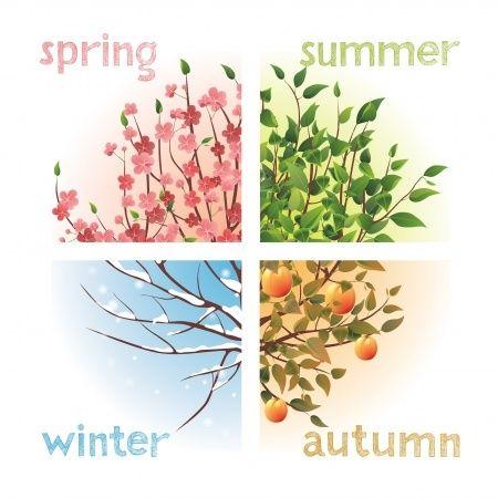 Vier seizoenen kleuranalyse winter lente zomer herfst