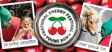 Official Visitor Information Website for Young NSW