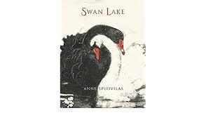 Image result for swan lake Anne Spudvilas