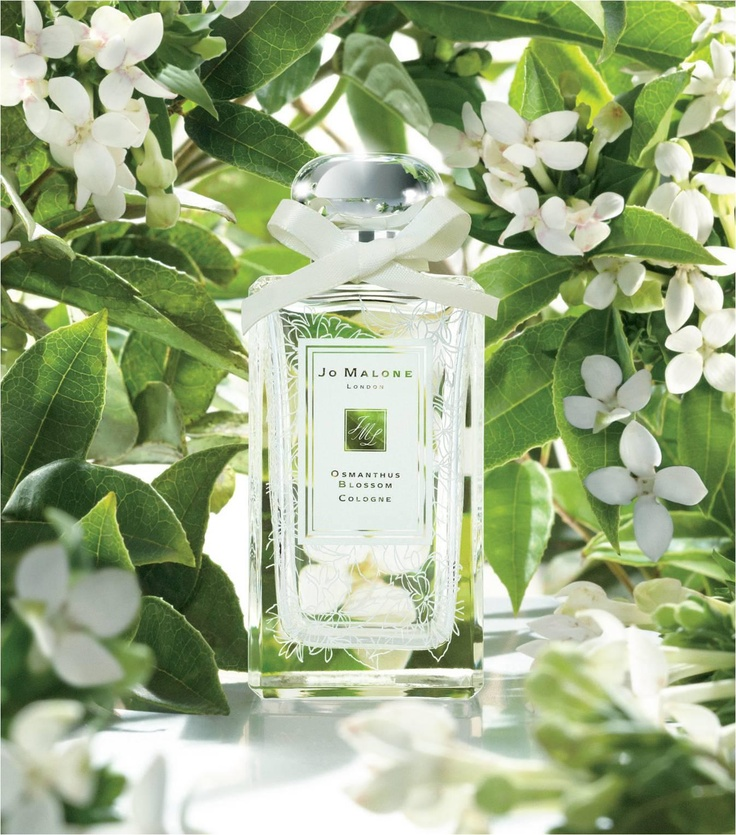 Jo Malone product shots