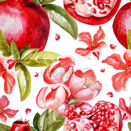 İndir - Granada meyve ve çiçekler ile güzel suluboya deseni - Stok # 70631537 gösterimi