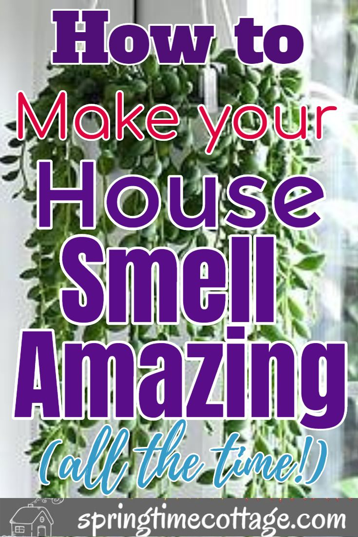 Smart Ways To Make Your Home Smell Wonderful House Smell Good