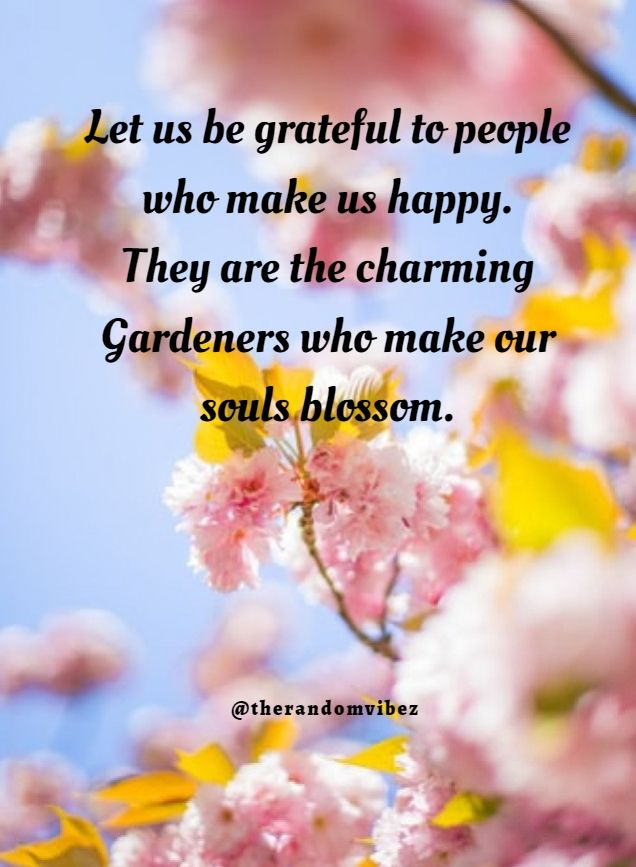 80 Most Inspiring Attitude of Gratitude Quotes, Sayings & Images | Good  thoughts quotes, Kind people quotes, Gratitude quotes