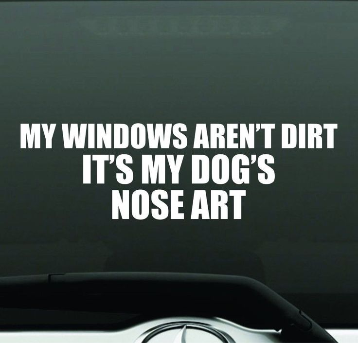 how to get bumper sticker off window