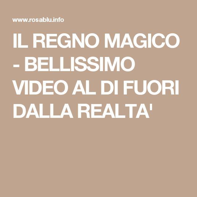 IL REGNO MAGICO - BELLISSIMO VIDEO AL DI FUORI DALLA REALTA'