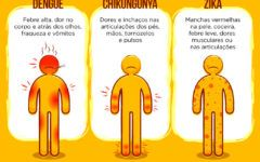 Dengue, Zica vírus e Chikungunya – Sintomas