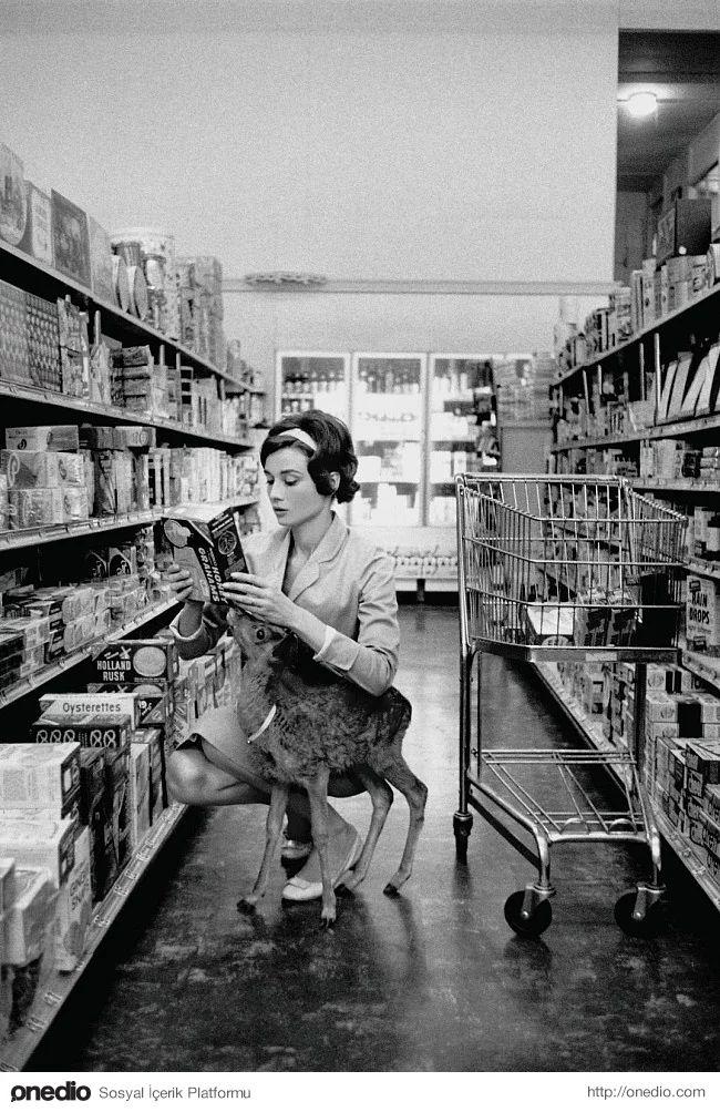 Audrey Hepburn evcil hayvanıyla, 1958
