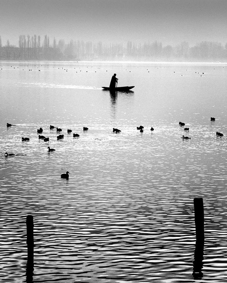 Peace-Kashmir by jayanta roy on 500px
