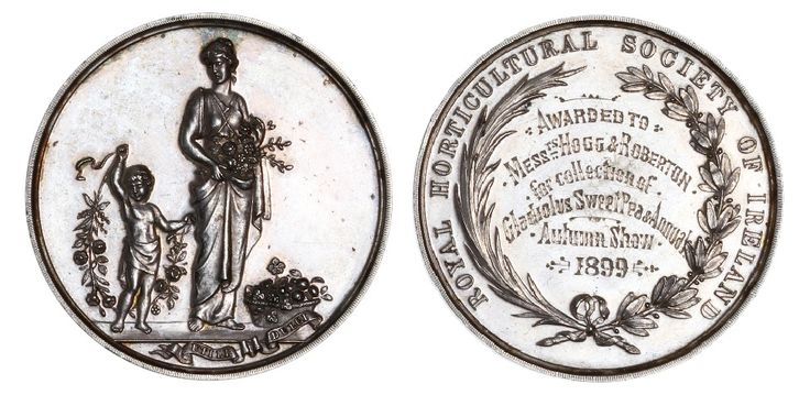Royal Horticultural Society of Ireland, a silver award medal, unsigned, robed female with flowers overseeing putto holding branches, rev. legend and wreath, named (Awarded to Messrs. Hogg & Roberton, for collection of Gladiolus Sweet Pea & Annuals, Autumn Show, 1899), 41mm (cf. Baldwin FPL 1994, 43)