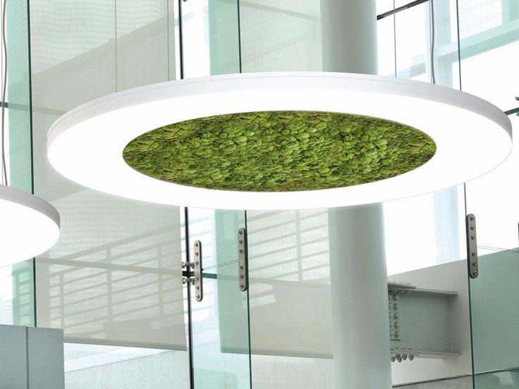 Pendant Light Full Scale Lighting, Wall Lamp From The Outside Inwards  Slightly Decreasing Illumination. The LUCE VERDE Series Provides A Glimpse  Of Nature ...