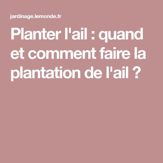 planter l 39 ail quand et comment faire la plantation de l 39 ail plantes garden pinterest. Black Bedroom Furniture Sets. Home Design Ideas