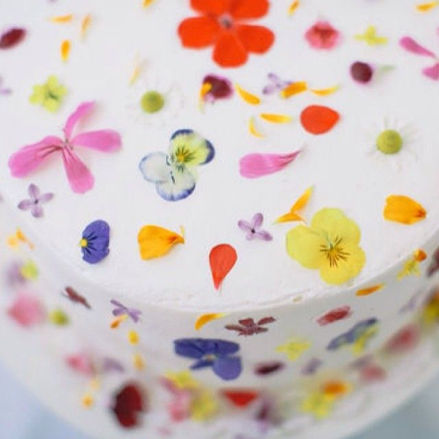 Edible Cake Flowers Brisbane
