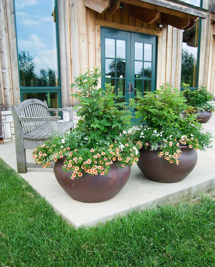 1566 best container gardening ideas images on pinterest for Large garden planter ideas
