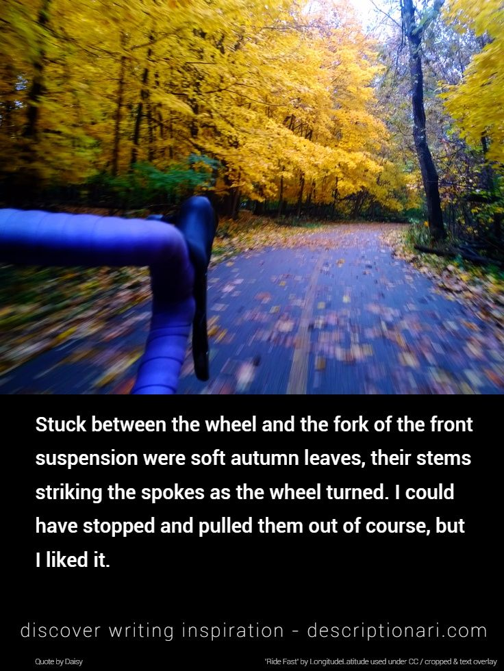 Cycling Quotes And Descriptions To Inspire Creative Writing