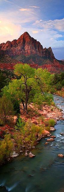 Zion National Park Utah. America the beautiful.