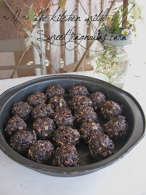 "Sweet Magnolias Farm ""Chocococonut No-Bake Refigerator Cookies"" Recipe on our Blog"
