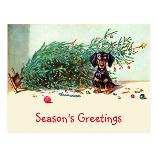 Funny Vintage Christmas Tree with a Dachshund Postcard