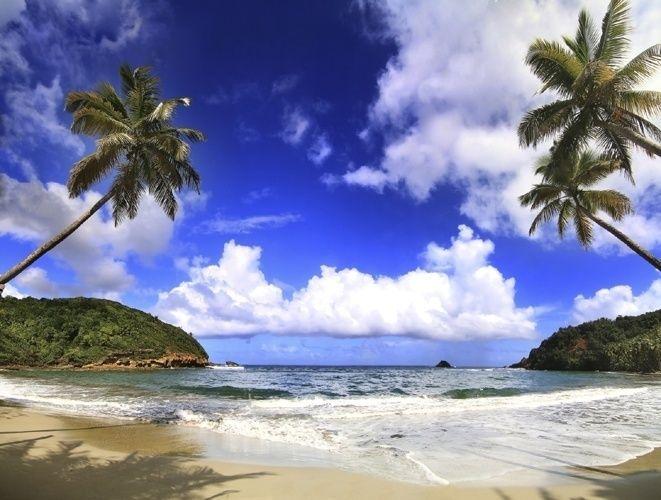 Dominica. Pequeno país insular nas Pequenas Antilhas, as praias do Mar do Caribe, com águas cristalinas e rica fauna submarina, estão aí ao seu alcance. Dentro dos 750 km² de terra firme do país, as belezas naturais seguem o mesmo padrão. Uma extensa rede de parques nacionais mantém bem preservados montanhas vulcânicas, florestas tropicais, centenas de rios, muitos lagos, arrecifes de corais e até um deserto.  Fotografia:  Getty Images.