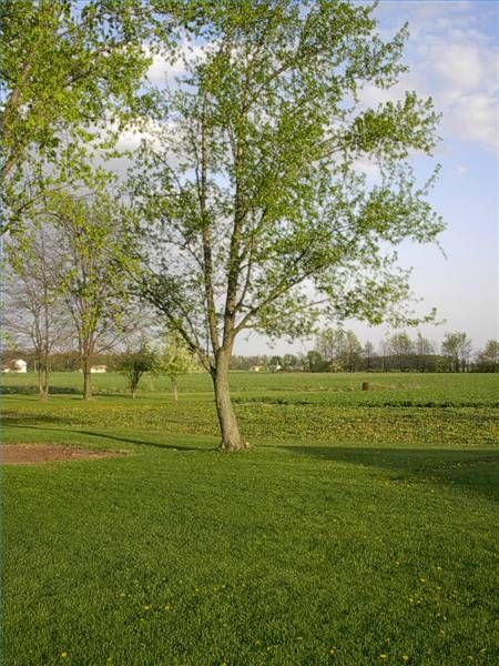 How to Earn Money on a Small Acreage