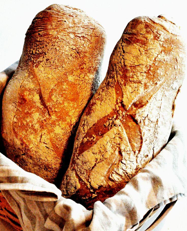 Rustic Italian Bread With Durum
