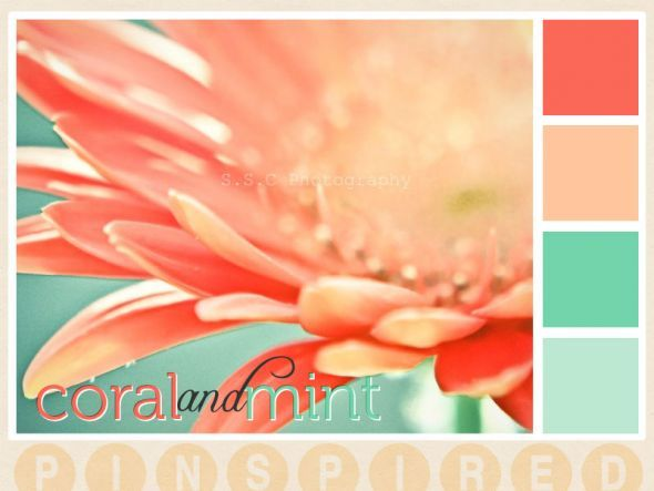 coral and mint decor - Google Search