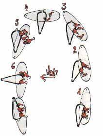 COURS:empanner1.On navigue vent de travers.2.Penchez le mat sur l'avant pour faire descendre la planche au vent.3.Au fur et à mesure que la planche descend,laissez la voile s'ouvrir pour qu'elle reste perpendiculaire au vent.Fléchir genoux.4.On est ici au vent arrière et il y a très peu d'appui dans la voile.Ecartez vos pieds et pliez vos genoux pour garder l'équilibre.Amplifiez l'inclinaison du mât pour continuer à tourner.Il ne faut pas lacher la voile avant que le flotteur ai fini de…