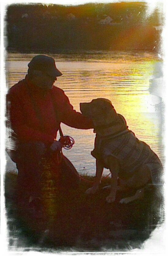 Denne Dogo Canarioen er verdens snilleste.