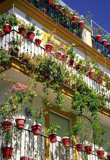 Oltre 25 fantastiche idee su piante da balcone su pinterest for Fontane da balcone