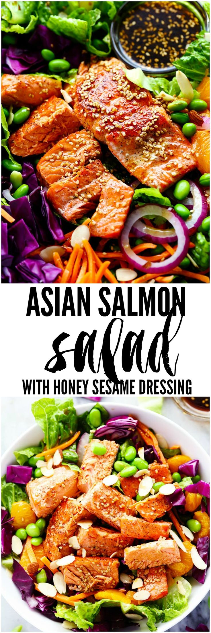 Asian Pan Seared Salmon Salad is bright and vibrant and complete with an amazing honey sesame dressing that takes this salad to a whole new level of delicious!