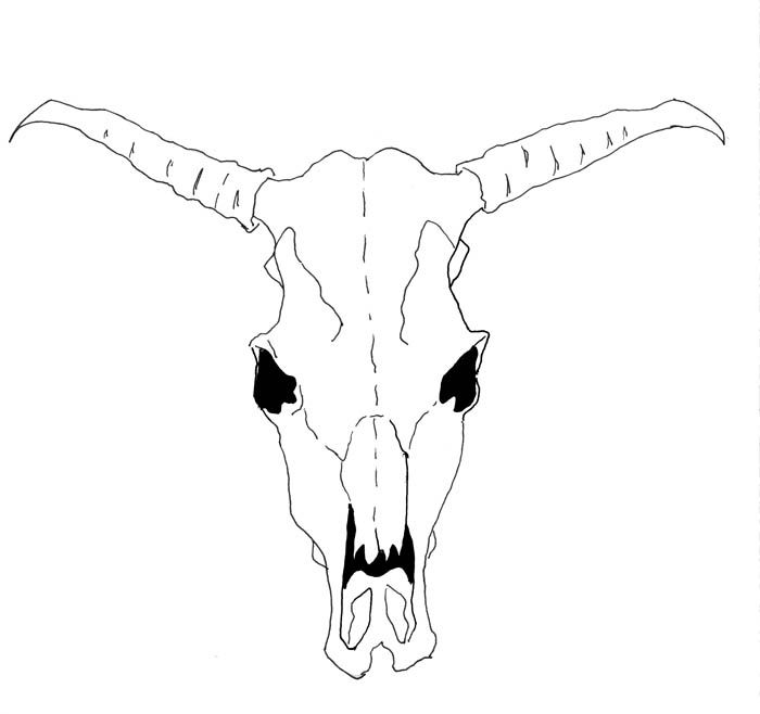 How to Draw a Cow Skull | eHow UKEhow Uk, Georgia O' Keeffe, Art Drawing, Art Lessons, Grade Art, Art Class, Art Ideas, How To Draw, Cows Skull