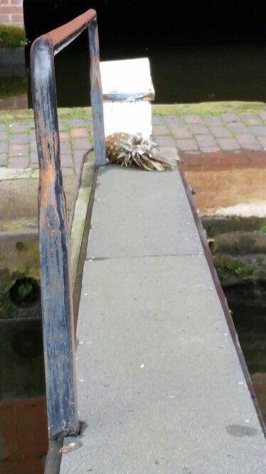 Pineapple lock