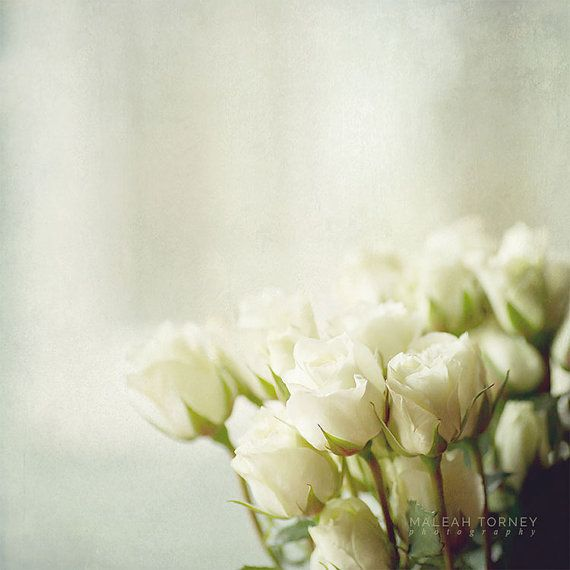 White Roses Photograph White Rose Bouquet Picture by MaleahTorney