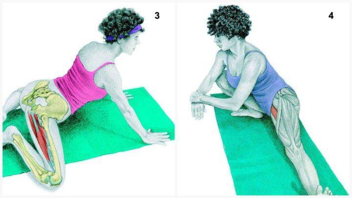 3. Задействованные мышцы: приводящие (аддукторы)  Выполнение: станьте на четвереньки и медленно раздвигайте колени, пока не почувствуете напряжение в мышцах паха.  4. Задействованные мышцы: приводящие (аддукторы)  Выполнение: станьте, широко расставив ноги. Медленно опускайте руки к правой ступне, сгибая правую ногу в колене и поднимая пальцы левой ноги вверх. Стопа правой ноги полностью стоит на полу