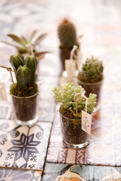 Mini-cacti and Mexican tiles, for a summer get-together.