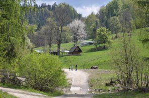 #pieniny #malopolska #poland
