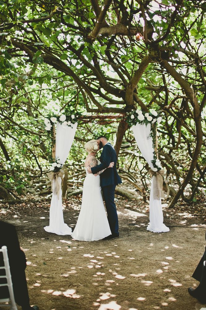 Large Cotton Tree at Moffat Beach, just one of a number of possible ceremony locations. There is a headland, large white sandy beach and flat rocky area and an elevated grassed park overlooking the ocean. Set up by Circle of Love Weddings Sunshine Coast Sue Young