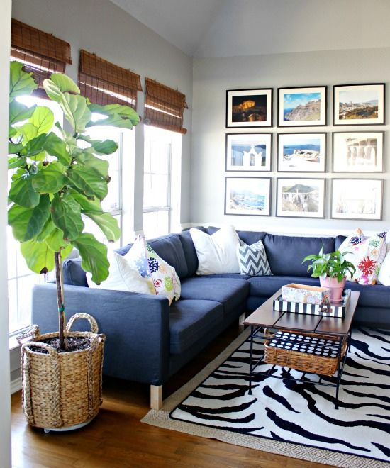 Fun, colorful and eclectic family room - love the blue sectional sofa, vacation photo gallery wall and fiddle leaf fig eclecticallyvintage.com