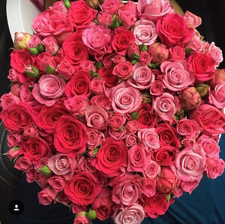 187 best Roses-big bouquet-luxury images on Pinterest | Red roses ...