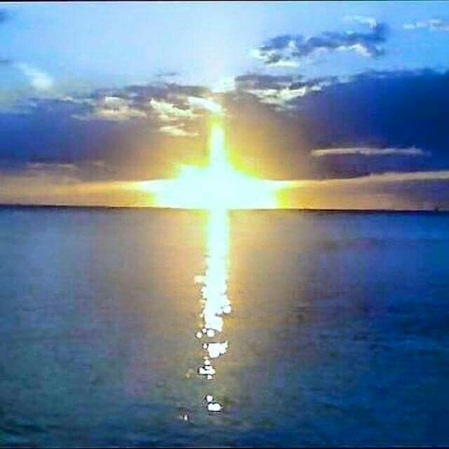 He is RISEN!✨✨✨✨. ☀️☀️☀️HAPPY EASTER Everyone! God is everywhere and can be seen through anything, especially nature.✨☀️