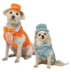 Dumb and Dumber Halloween Dog Costume - Dog.com
