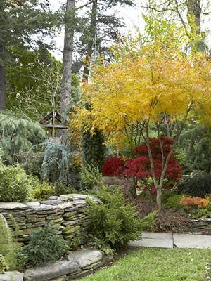Fall Landscaping Ideas 49 best autumn landscapes images on pinterest   fall, flower