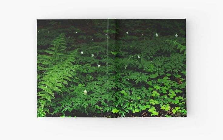 Hardcover Journal #wood #forest #heart #landscape #green #soil #deep #photo #photography #faerieshop #mystic #mystical #beautiful #plants #clover #fern #bell #white #night #dark #mysterious #jungle #tropical #redbubble #stationery