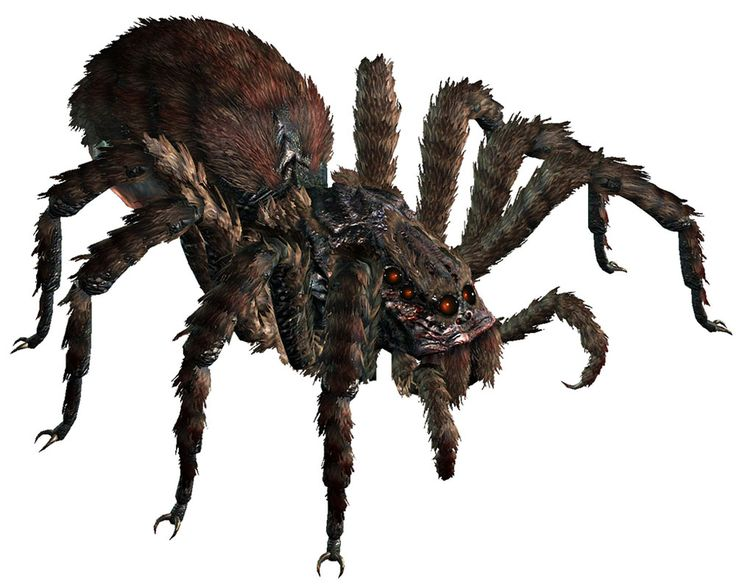 Yeah, a giant spider... as in, big enough to make a meal of a normal person.