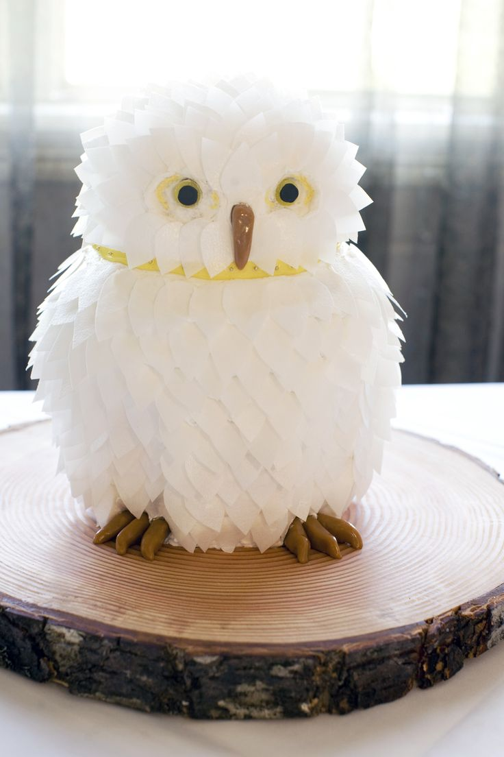 Owl cake ... wow.  Feathers: rice paper, beak and talons: caramel, eyes: gummy candies