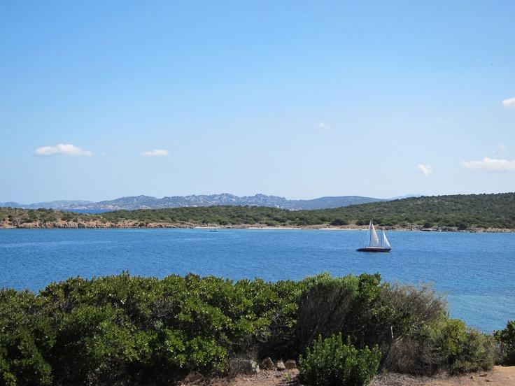 View from panoramic street (La Coluccia peninsula)