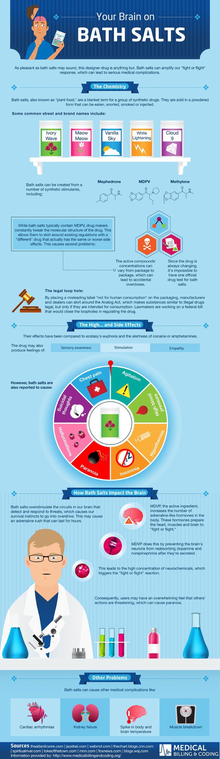 Your Brain On Bath Salts Infographic