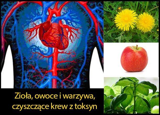 Zioła, owoce i warzywa, które pomagają w oczyszczeniu krwi z toksyn  http://dolinaziol.blogspot.com/2014/04/zioa-owoce-i-wazywa-ktore-pomagaja-w.html  Aby oczyścić krew należy przede wszystkim wspomóc organy wewnętrzne, które odpowiedzialne są za wydalanie toksyn i produktów przemiany materii. Sprawdź czego można w tym celu użyć.